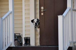 Telde locksmiths Seguridad en las puertas de entrada viviendas unifamiliares